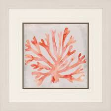 coral color coral color decor wayfair