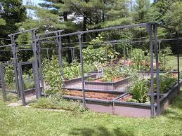 vegetable garden designs layout ideas vertical angled trellis