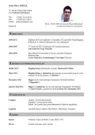 resume cv format curriculum vitte great resume cv format free resume template