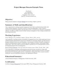 resume objectives writing tips resume objectives sles luxury resume objectives writing tips