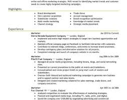 Professional Resume Builder Service Write Resume Online Professional Resume Writing Examples For