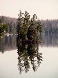 Eels Lake Cottage Rental by Eels Lake Cottages U0026 Marina Eels Lake Photos Vacation In The