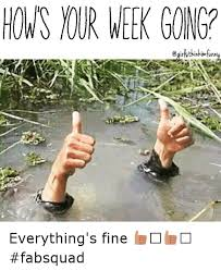 Everything Is Fine Meme - hows nur week gonga everything s fine fabsquad funny
