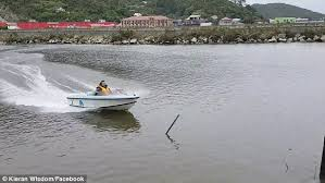 boat driving on new zealand inlet crashes into wooden pole daily
