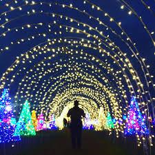 santa rosa christmas lights nuvali celebrates christmas with magical field of lights it s me