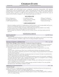 sample adjunct professor resume sample resume portfolio analyst frizzigame best ideas of portfolio analyst sample resume on format sample
