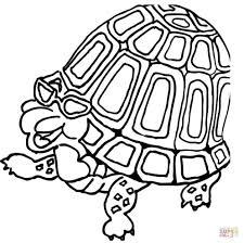 turtle in glasses coloring page free printable coloring pages
