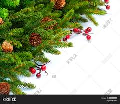 christmas tree decoration border image u0026 photo bigstock