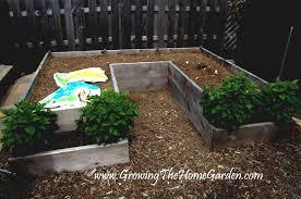 raised bed vegetable garden layout home design