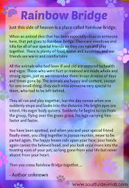 Poems For Comfort Rainbow Bridge Poem For Pet Loss Soulful Animal Blog Posts