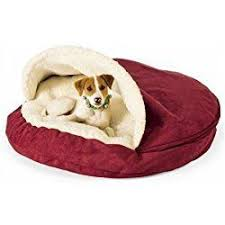 Elevated Dog Beds For Large Dogs 45 Best Raised Dog Beds For Large Dogs Images On Pinterest Large