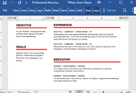 Create Your Own Resume Template Professional Resume Template For Word