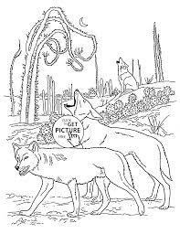 coyotes animal coloring page for kids wild animal coloring pages