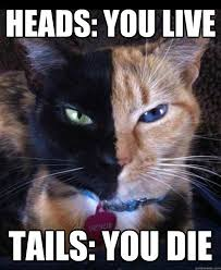 Two Face Meme - heads you live tails you die two face cat quickmeme