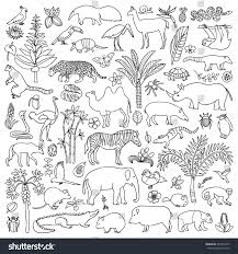 doodle tropic forest animals plants coloring stock vector