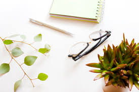office plant office plants increase productivity focus and health