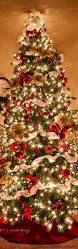 Decorated Christmas Trees Ideas Best 25 Christmas Trees Ideas On Pinterest Christmas Tree