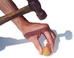 14 best walnut shell crafts images on walnut shell