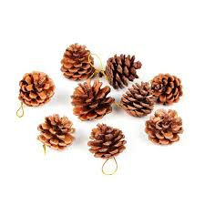 christmas nuts 36pcs 2 5cm real pine nuts cones christmas tree ornament
