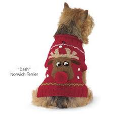 67 best dogs in clothes images on pinterest animals dog