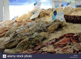 cuisiner la seiche fraiche whole fresh cuttlefish seiche fraiche for sale at a stock