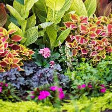 Perennial Garden Design Ideas Shade Garden Design Ideas How To Choose The Right Plants
