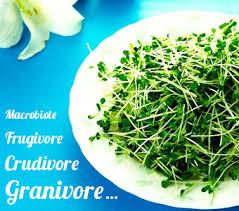 cuisine crudivore les nouveaux modes de consommation végétarien végétalien