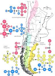 Patagonia Map Map Of Southern South America Indicating The Four Geographical