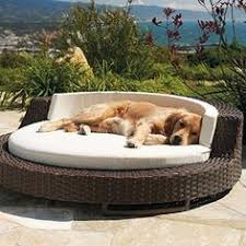 Outdoor Lounge Chair With Canopy Outdoor Canopy Dog Bed I Will Totally Get My Animals Ridiculous