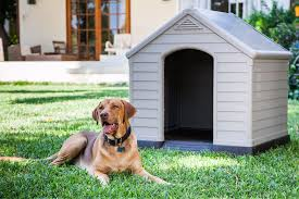 keter dog house keter
