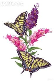 machine embroidery designs butterfly garden for sale