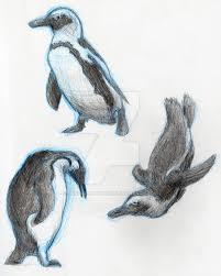 penguin sketches by justsomedude86 on deviantart