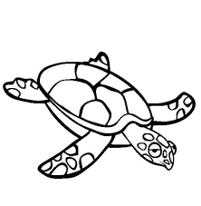 sea turtle coloring animal coloring pages
