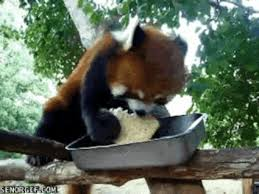 Panda Meme Mascara - panda makeup meme makeup virtual fretboard
