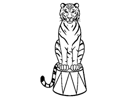 coloring pages of tigers tiger of circus coloring page coloringcrew com circus birthday