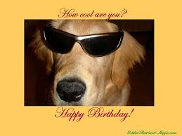 45 best birhtday greetings images on pinterest birthday wishes