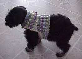 crochet pattern for dog coat sawyer s dog sweater crochet pattern free crochet pattern courtesy