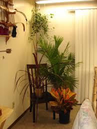 Living Room Corner Decor Fresh Plants Closed Casual Chair On Floor As Decorating Corners