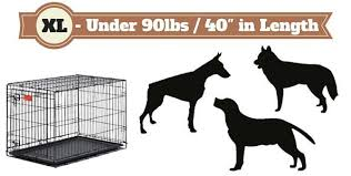 2 types of boxer dogs what size dog crate should you get and which type is best