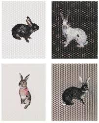 rabbit prints charming baker prints jealous gallery