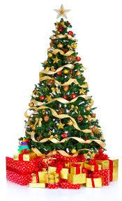 real christmas trees christmas lights decoration