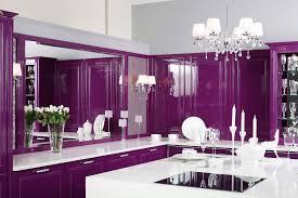 unusual design purple kitchen ideas come with dark brown and white