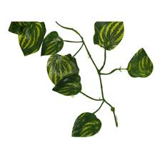 garden home decor fake plant green ivy leaves vine foliage