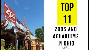 Ohio travel wiki images Top 11 best zoos and aquariums in ohio jpg