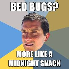 Bed Bug Meme - bed bugs more like a midnight snack create meme