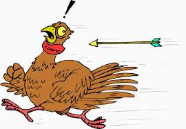 cartoon turkeys for thanksgiving sharon u0027s love of books thanksgiving a novel by ellen cooney