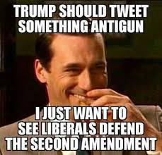 2nd Amendment Meme - 2nd amendment lib logic funny i hate liberal logic pinterest
