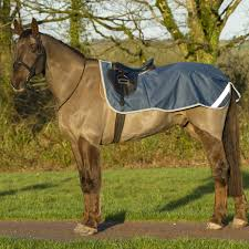 Buccas Rugs Freedom Riding Rug Bucas