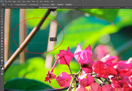 using the zoom u0026 hand tools in adobe photoshop