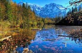 autumn cool images scenery rivers forests nature view